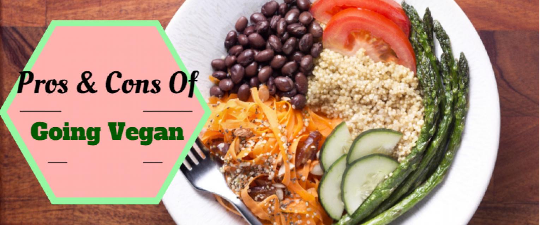 Vegetarianism: pros and cons. Vegetarian cuisine: recipes 49