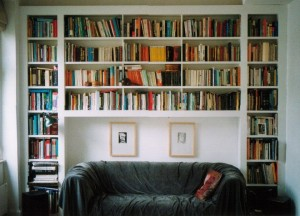 Bookshelves take a lot of space at home