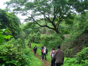 Monsoon trekking will de-stress you