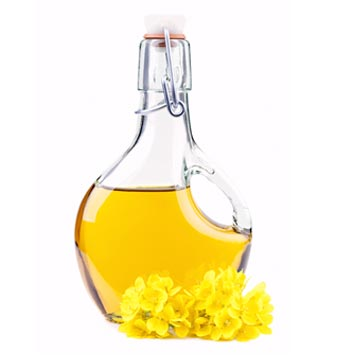 Canola oil is