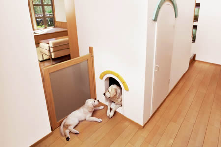 A wooden floor is more comfortable for your petsA wooden floor is more comfortable for your pets