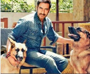 Ajay Devgn with his cute pet dogs