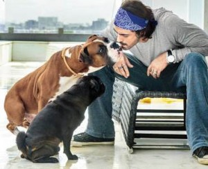 Arjun Rampal with this pet dog