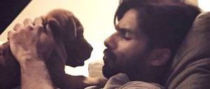 Shahid Kapoor and his cute pet dog